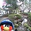 Pic_0637